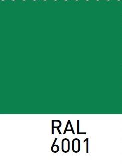 sarvuotos-durys-RAL6001
