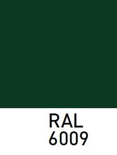 sarvuotos-durys-RAL6009