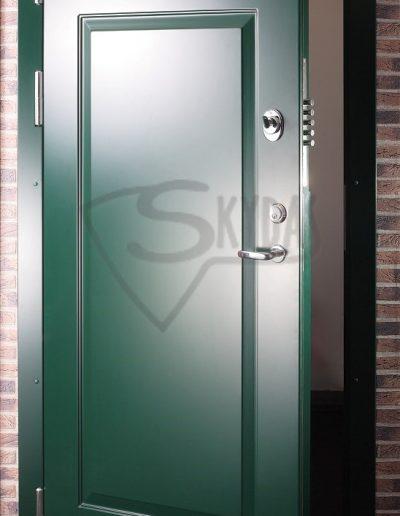 Skydas lauko durys su 3D dizainu
