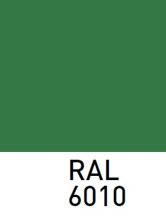 RAL6010