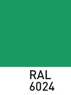 RAL6024