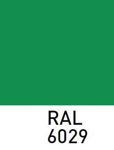 RAL6029