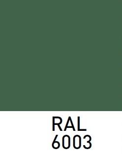 sarvuotos-durys-RAL6003