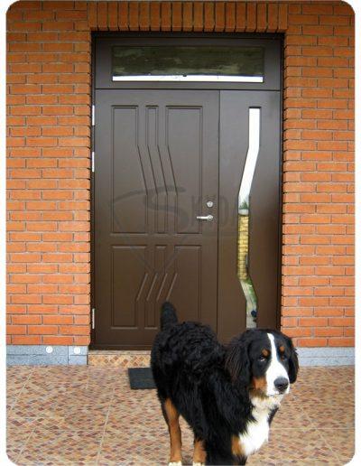 Skydas apsaugines namo durys su suniu