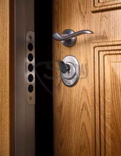 Skydas darvuotos durys RC3 IMG_9905